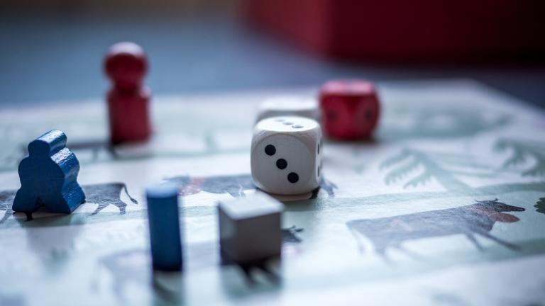 """Projekt Brettspiel """"Junglachse wandern durchs Bröltal"""" bewilligt"""